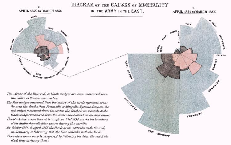 This classic data visualization example was created by Florence Nightingale